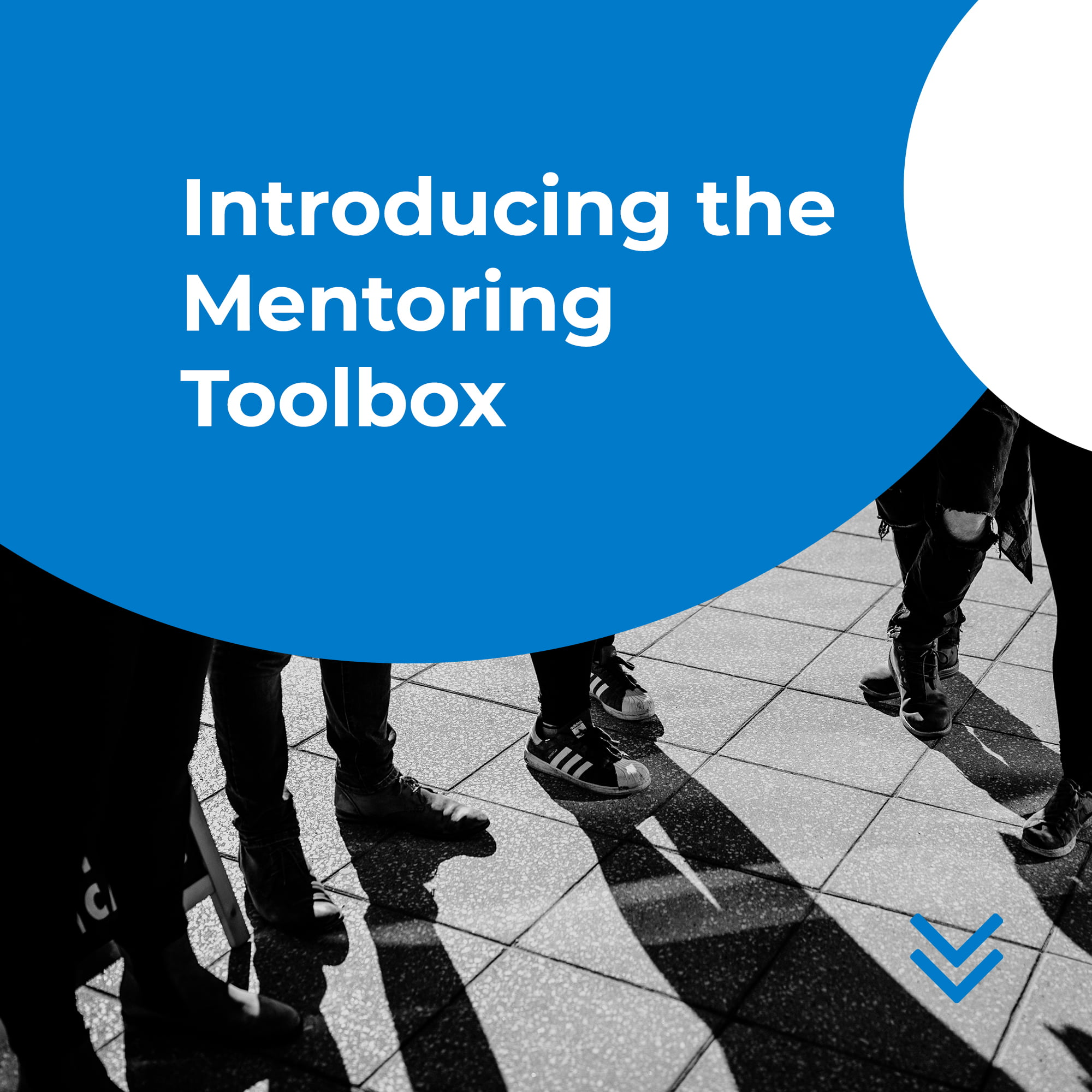 Introducing the Mentoring Toolbox